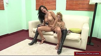 busty big cock tranny celeste glamour sucked and.