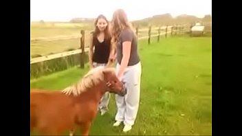 paardrijden... riding pony